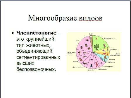 Презентация по биологии 7 класс