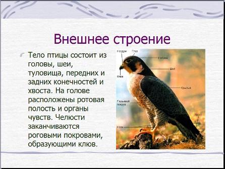 445 b. Документы.  Добавить документ в свой блог или на сайт.  11.09.2012. Дата конвертации.