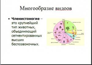 Презентация по биологии Членистоногие