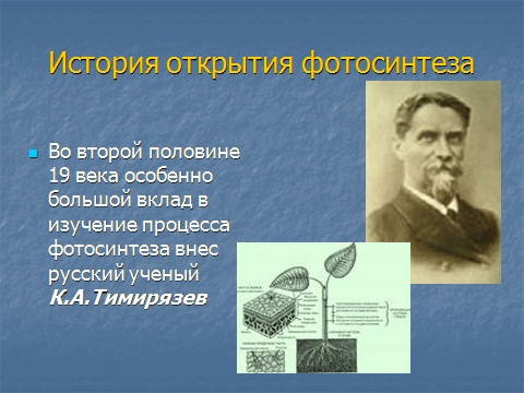 Презентация по биологии 6 класса Фотосинтез