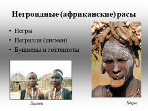 презентация по биологии 9 класс человеческие расы