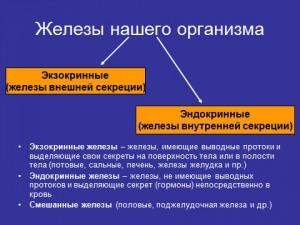 презентация по биологии железы внутренней секреции