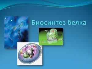 презентация powerpoint на тему Биосинтез белка