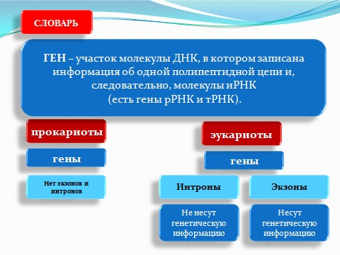 презентация на тему Биосинтез