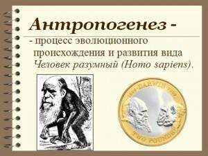 Презентация по биологии 9 класс Доказательства происхождения человека