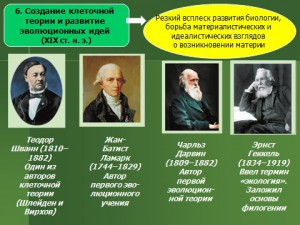Презентация powerpoint История развития биологии