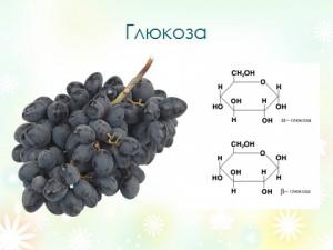 Презентация по биологии на тему классификация углеводов