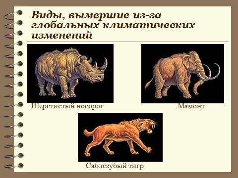 Скачать бесплатно презентацию powerpoint по биологии 9 класса Направления эволюции