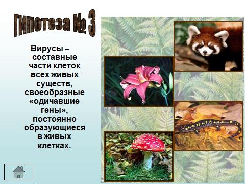 Презентация по биологии 9