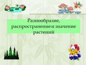 Презентация по биологии 6 класса на тему разнообразие растений