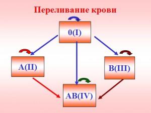 Группа крови переливание