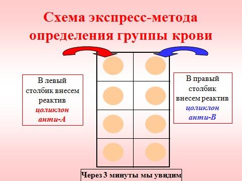 кровь человека и ее группы и резус фактор