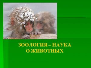Наука зоология презентация по биологии 7 класса