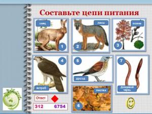 Биология 9 класс уроки экологии
