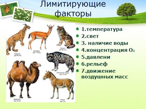 Ограничивающие факторы экологии