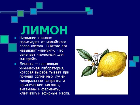 Фитонцидные растения