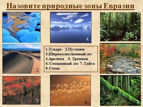 органический мир евразии
