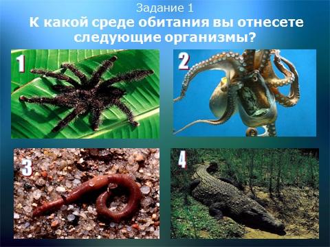 презентации по экологии скачать бесплатно
