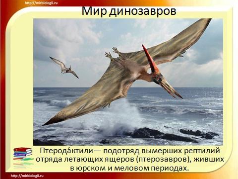 биология 9 класса динозавры