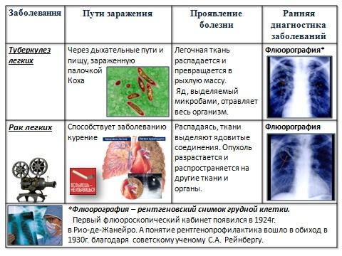 Презентации по биологии powerpoint на тему