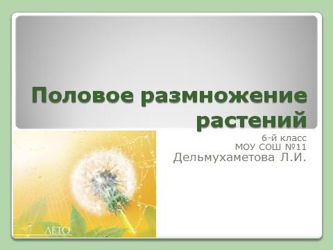 размножение растений в презентации по биологии