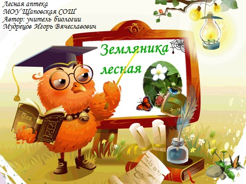 Fragaria Vesca - земляника лесная - презентация по биологии