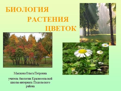 Строение цветка высших растений