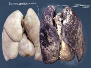 Гигиена дыхания в презентации по биологии