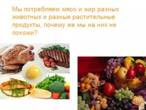Презентация на тему рациональное питание