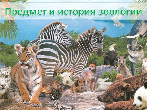 Зоология как наука