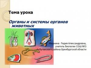 Системы органов презентация по биологии