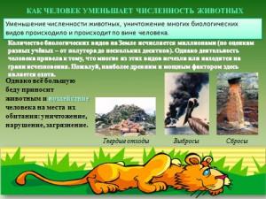 Охрана животных в презентации по биологии