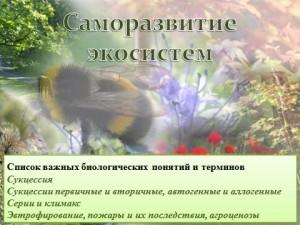 изменения в экосистеме