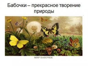Презентация на тему бабочки скачать бесплатно