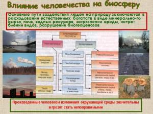 Презентация на тему биосфера и человек